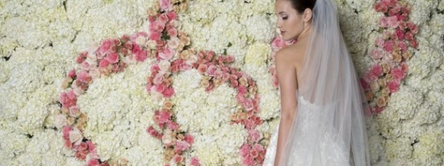 True Bride: Brides, Weddings, Wedding Directory, Wedding Planning, Australian wedding news, Australian wedding guide.